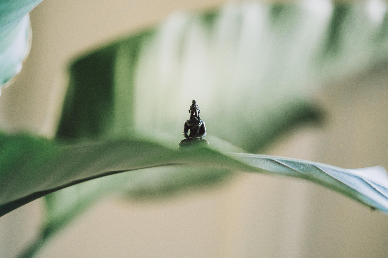 misvattingen over yoga